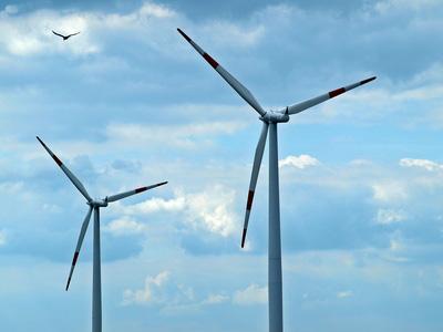 KNE informiert im Akteursforum der Klimaschutzagentur Region Hannover