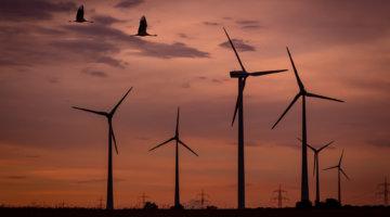 Windenergieanlagen im Sonnenuntergang