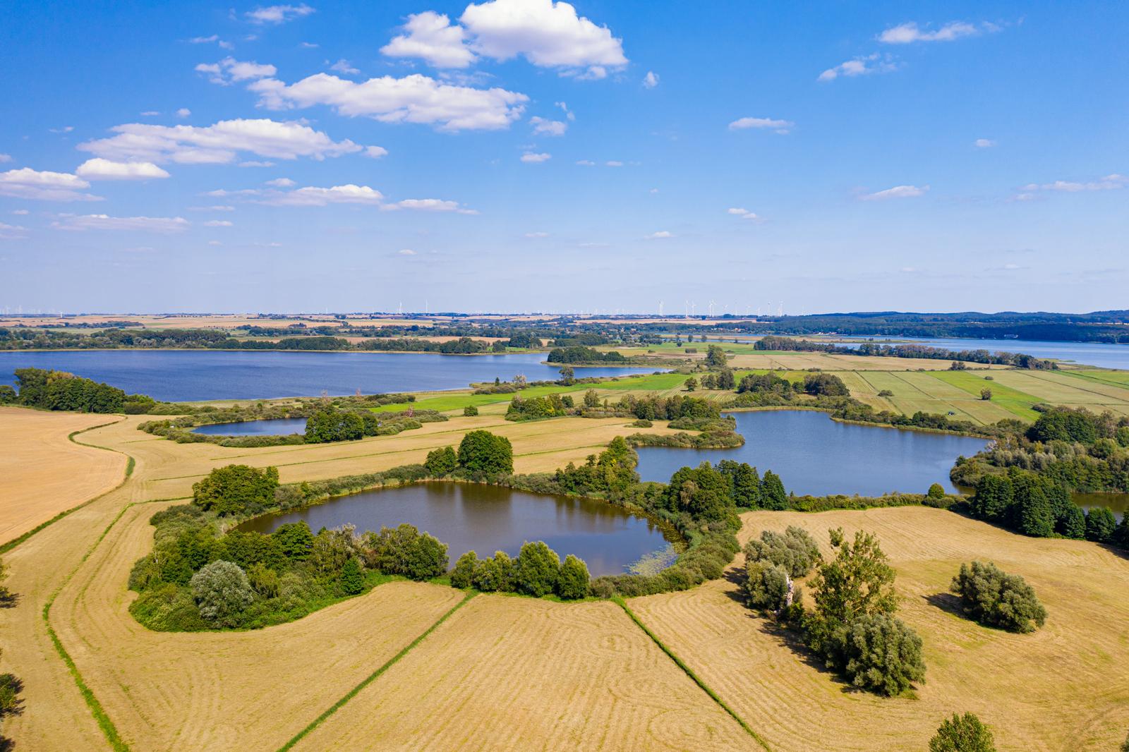 Aussicht auf den Uckersee und die Landschaft der Uckermark-Foto: Tilo Grellmann, adobe.stock