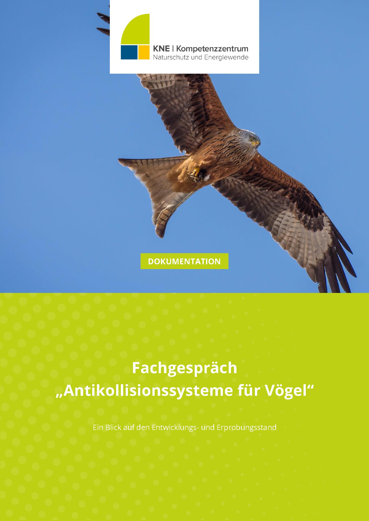 Titel_KNE-Dokumentation_Fachgespraech-Antikollisionssysteme-fuer-Voegel_2021