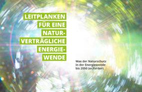 K19-Artikel_Naturschutzverbaende-Titelbild