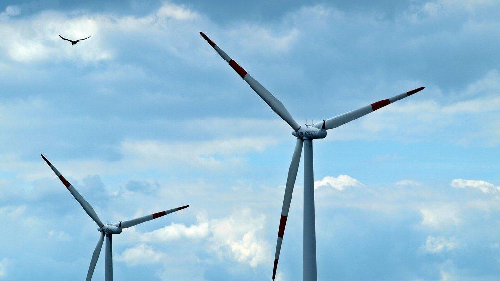Windenergieanlage mit Vogel