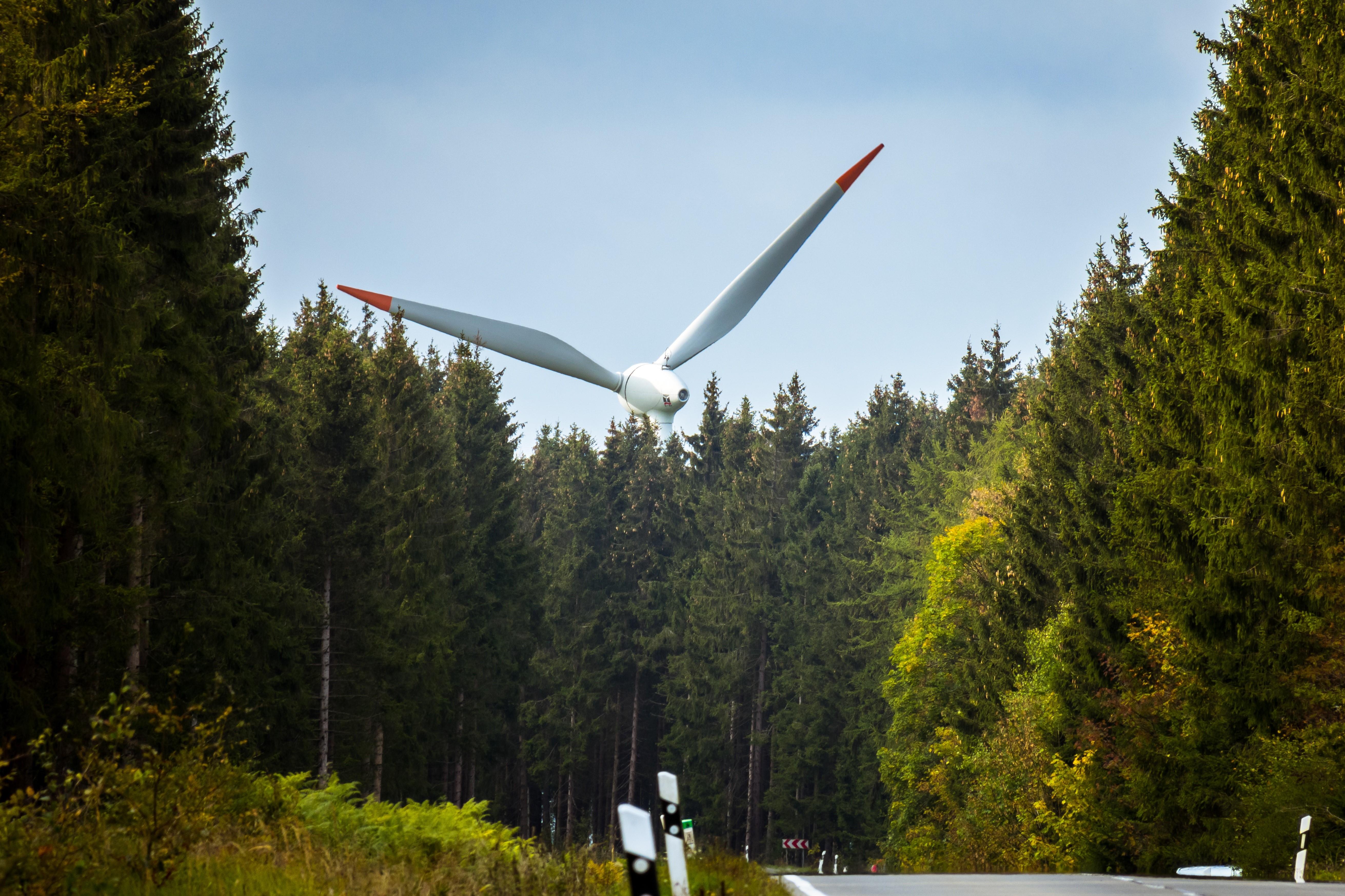 Windenergieanlage im Wald
