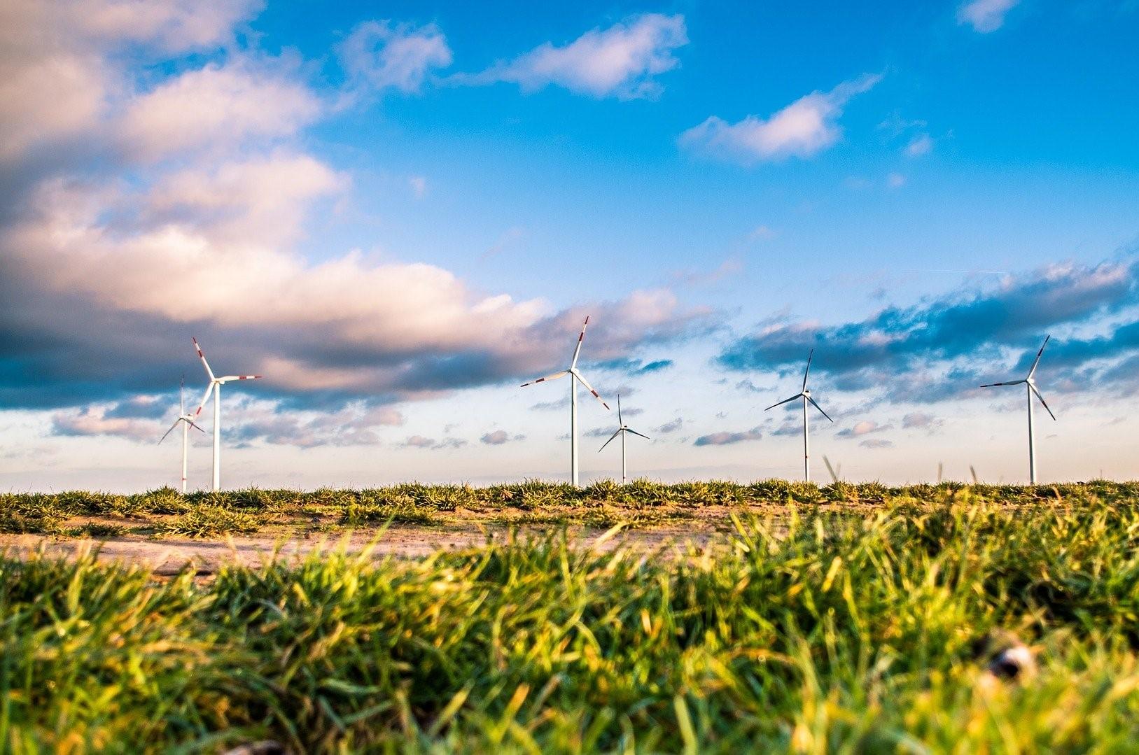 Windpark mit Landschaft
